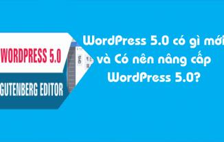 WordPress 5.0 có gì mới và Có nên nâng cấp WordPress 5.0?